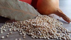 le quinoa et ses bienfaits