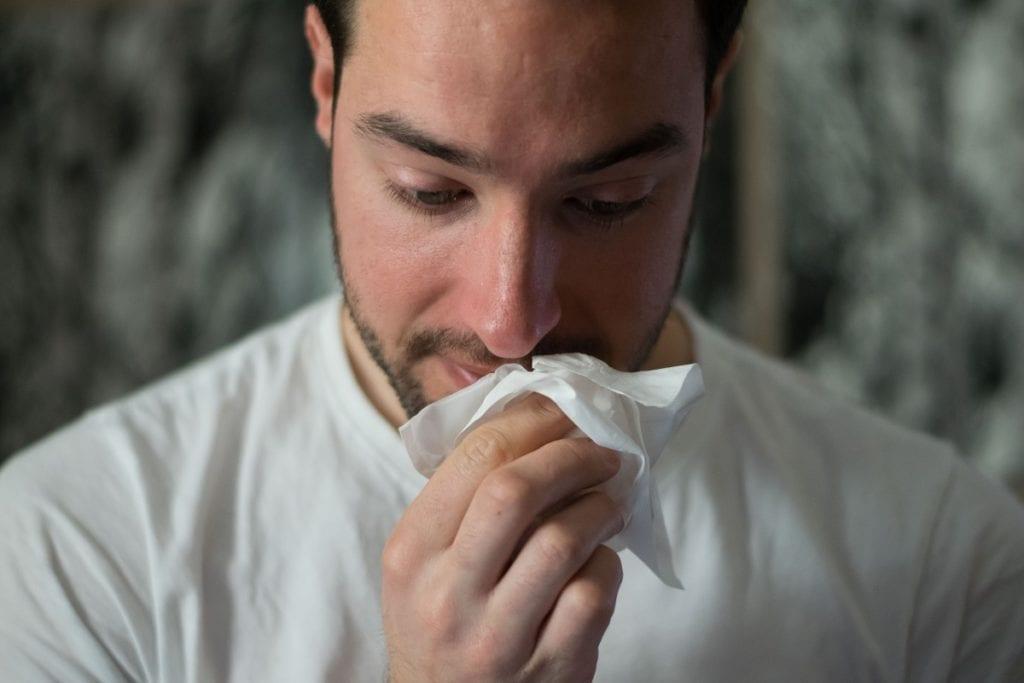 l'échinacée et la grippe